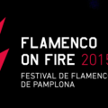 festival-flamenco-on-fire-pamplona-2015